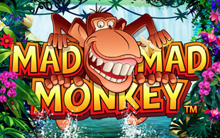 mad-mad-monkey-logo