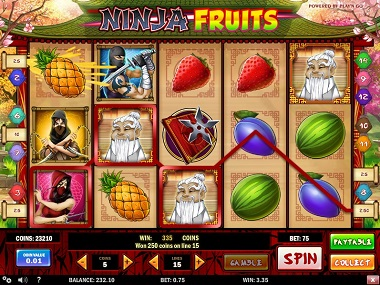 ninja-fruits-win
