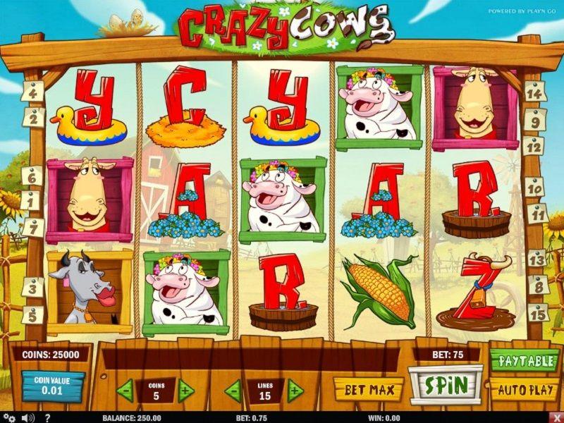 crazy-cows-slot