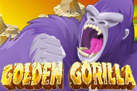 Golden Gorilla 01