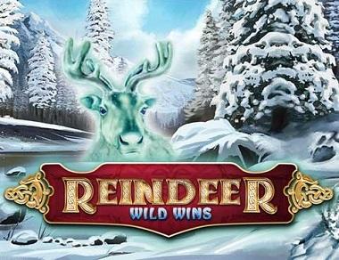 Reindeer-Wild-Wins-logo
