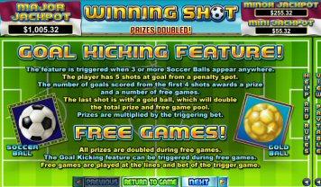 winning-shot-info