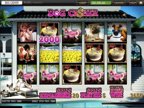 dog-casher-slot2