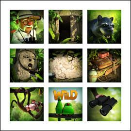 dr-magoos-adventure-symboler