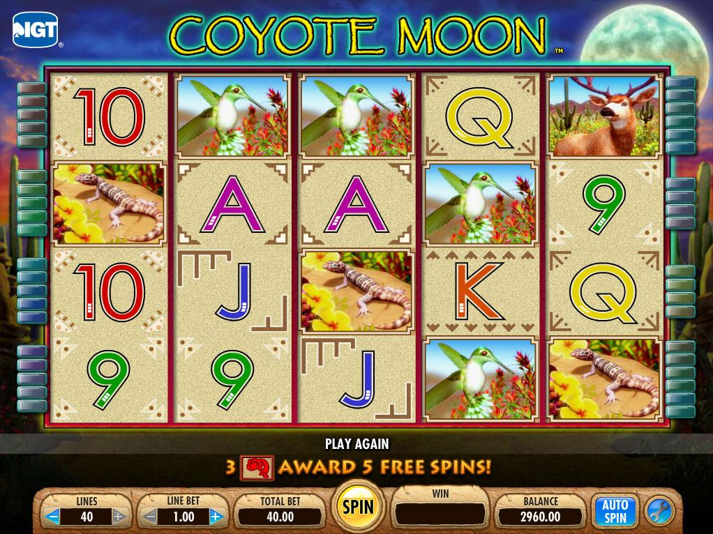 coyote-moon-slot1