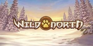 wild-north-slot-1